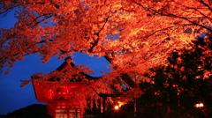 Pagoda near Kiyomizu-dera temple, Kyoto, Japan Stock Footage