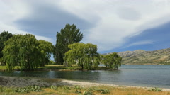 New Zealand Lake Dunstan willow trees and park near shore Stock Footage