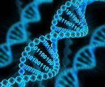 DNA molecules with binary code, 3d render Stock Illustration