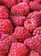 Stock Photo of sweet fresh raspberries