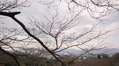 Motion Control Pan Time Lapse of Kiyomizudera Temple in Kyoto, Japan -Tilt Down- Stock Footage