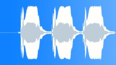Car Horn Honk 3 Sound Effect