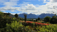 New Zealand Lake Manapouri thin band of lake and red flowers Stock Footage
