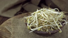 Mungbean Sprouts (seamless loopable) Stock Footage