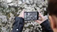 Young Women Shooting Flowers with Smart Phone Stock Footage