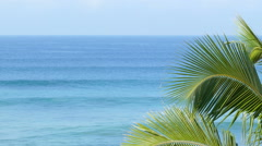 beautiful blue sea landscape with palm leaves - stock footage