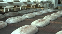 hearth bread moves along a conveyor belt.mp4 - stock footage