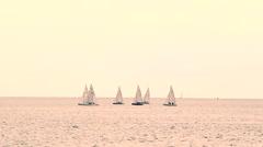 Sailing race at sunset Stock Footage