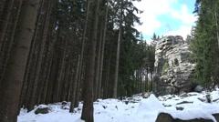 4k Snow winter panning Feuersteinklippen Harz mountain Stock Footage
