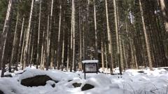 Stock Video Footage of 4k Snow winter panning Feuersteinklippen rocks Harz mountain