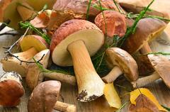 Fresh mushrooms on wooden table Stock Photos