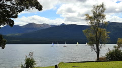 New Zealand Lake Te Anau sailboats between lawn and hills Stock Footage
