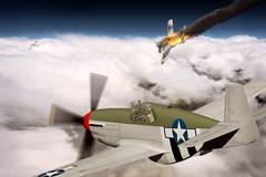 P-51B Mustang - stock illustration