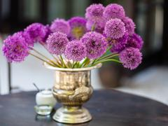 Allium flowers bouquet in a stylish decorative vase - stock photo