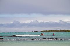 Unidentified tourists kayaking in Garraptero beach, Santa Cruz, Galapagos - stock photo