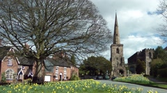 Old English church spire daffodils blowing breeze Stock Footage