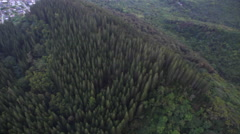 Aerial cool flyover of forest, North Shore, Oahu Stock Footage