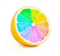 Lemon cut half slice with color wheel isolated - stock illustration