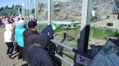 Visitors look at a zoo animals Stock Footage