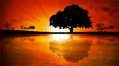Tree on a background sunset Stock Illustration