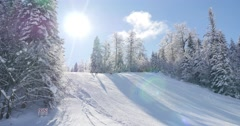A beautiful winter scene with some skiers skiing downhill Arkistovideo