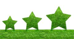 The Green Grass Star Stock Illustration