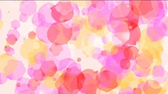 Rose Petals Motion Background - stock footage
