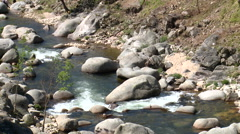 Rapids on mountain river from upstream, boulders and small trees Stock Footage