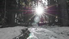 Time lapse in early spring in Pokljuka Stock Footage