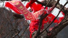 Red armbands on the branch Stock Footage