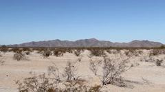 Sonoran Desert, Arizona - Real Time Still Shot Stock Footage