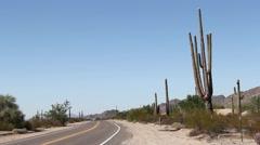 Sonoran Desert, Arizona - Car Driving on Desert Road with Saguaro Cactus Stock Footage