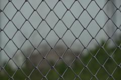 close up pattern Barb Wire - stock photo