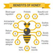 Healthy honey infographic placard. - stock illustration