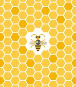 Sweet geometric pattern with honeycomb and bee Stock Illustration