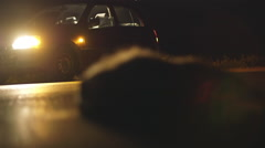 Road kill dead badger on the side of the road,night, car rack focus Stock Footage