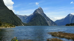 New Zealand Milford Sound Mitre Peak and marsh grasses Stock Footage