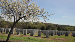 National Cemetery in spring Stock Footage
