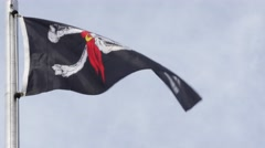 Pirate Flag being lowered- close up Stock Footage
