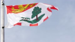 Prince Edward Island Canadian Provincial Flag being flown - close up Stock Footage