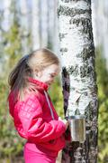 Little girl collects birch sap in the woods Stock Photos