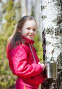 Child collects birch sap in the woods Stock Photos