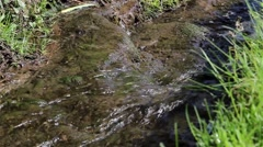 Close Up Stream Flowing Over Mossy Stone Mini Water Fall Past Grass Bank Stock Footage