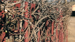 Dry twigs on the iron fence (2) Stock Footage