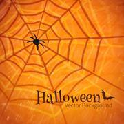 Felt pen drawing of spider web Stock Illustration