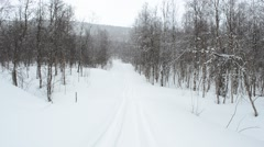 Snowing in vivid birch tree forest in easter with snowmobile track and deep snow Stock Footage