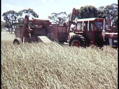 AUSTRALIAN GRAIN HARVESTING/ FARMING (ARCHIVE FOOTAGE) - stock footage