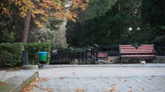 CRIMEA.RUSSIA-2012: Bench in the park. Autumn. Stock Footage