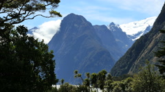 New Zealand Milford Sound steep peaks and rustling trees Stock Footage