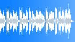 Happy Positive Texas Roadhouse Boggie Blues 15sec edit - stock music